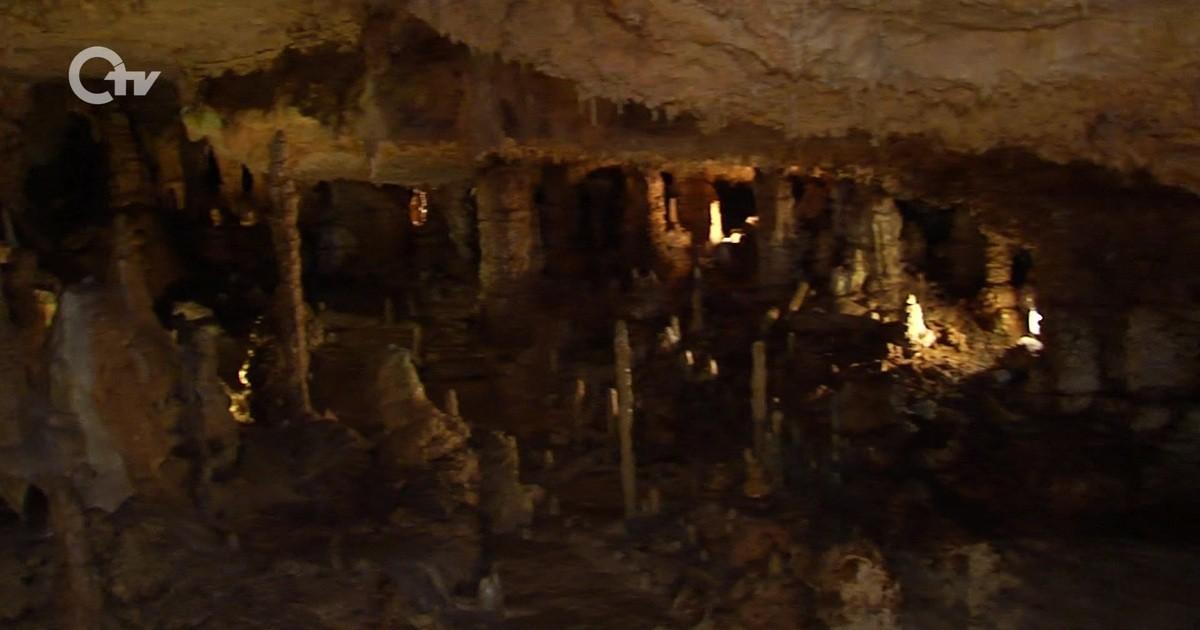 Wald Und Höhle